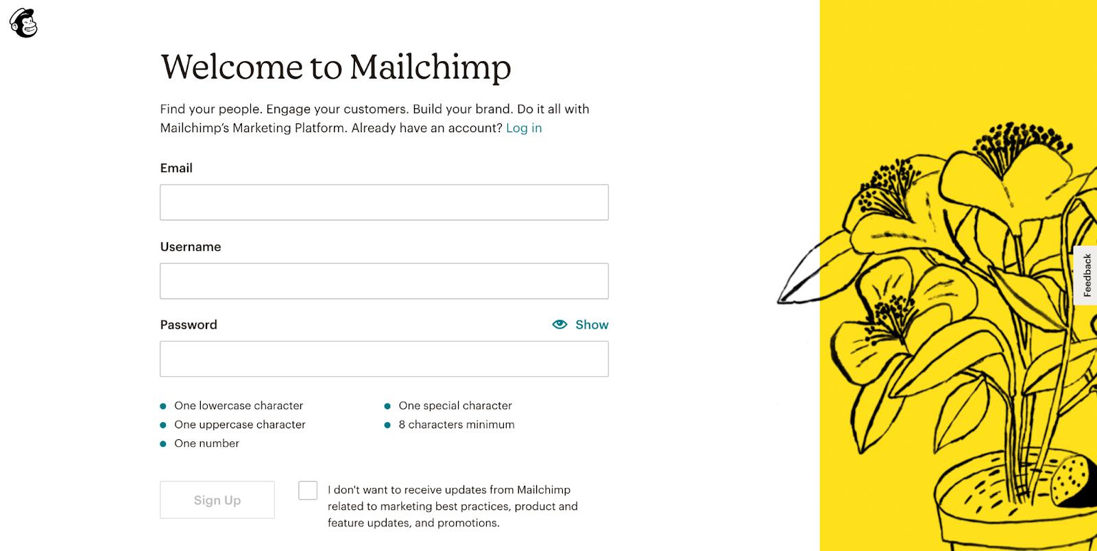 MailChimp Lead Gen