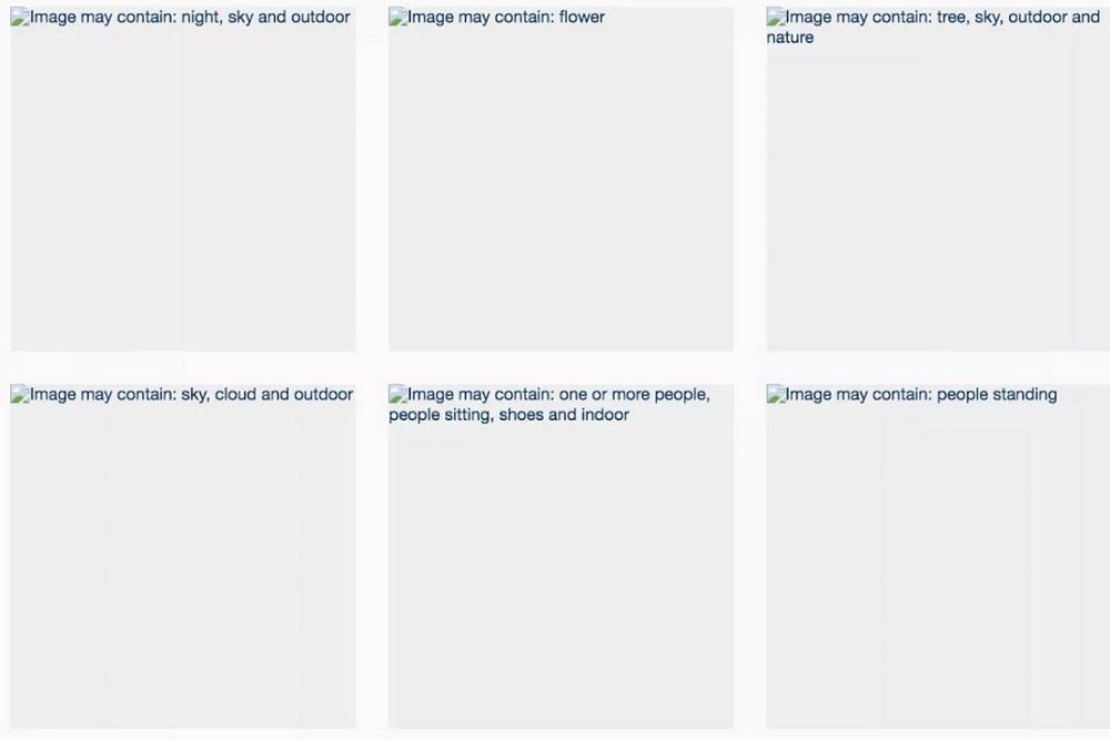 Facebook image recognition bug