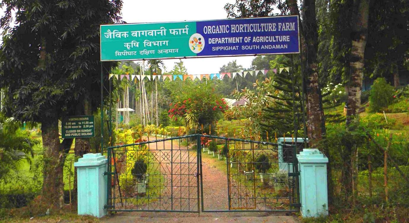 Sippighat Agricultural Farm