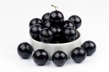 frutas do bonsai de jabuticaba