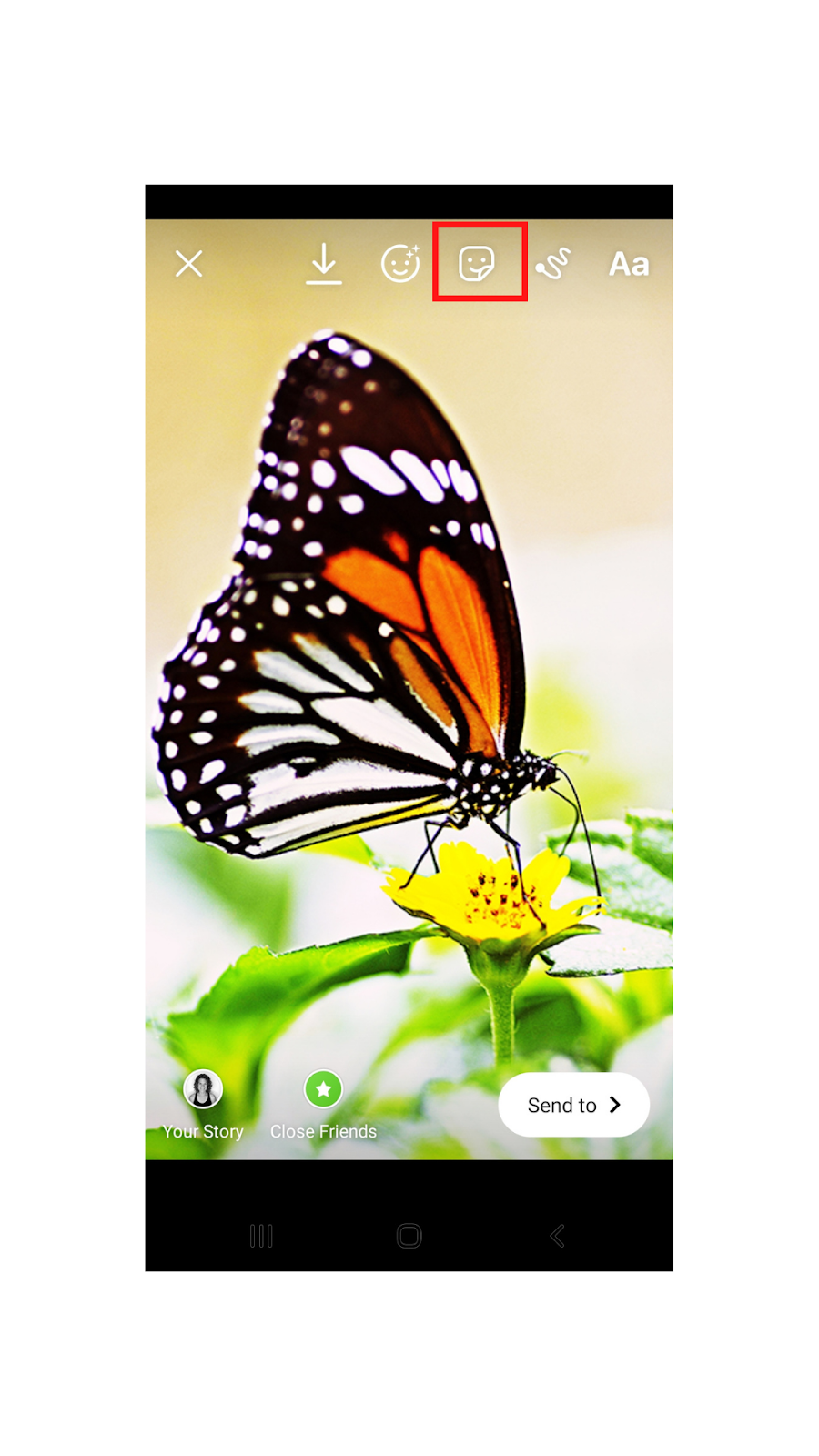 Picture of butterfly and tapping sticker icon