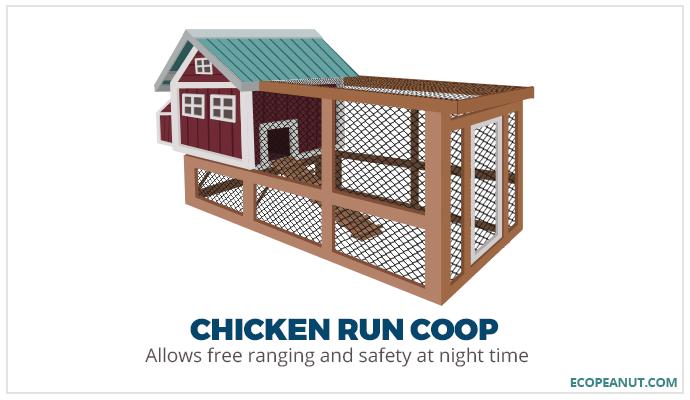 chicken run coop graphic