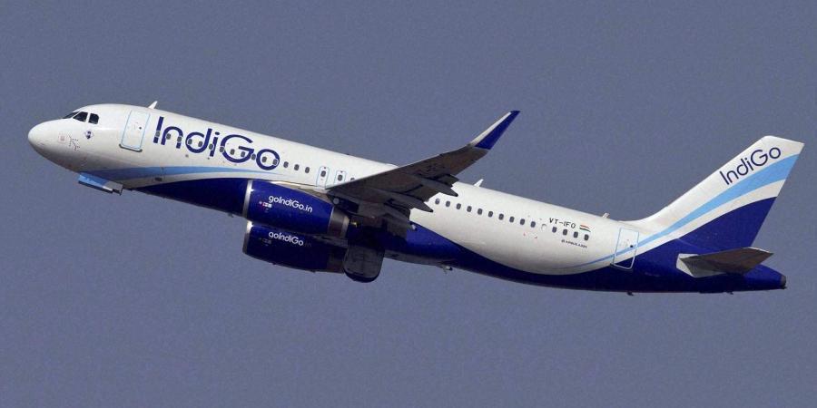 Employees of IndiGo subsidiary go on strike in Goa; flights slightly delayed-  The New Indian Express