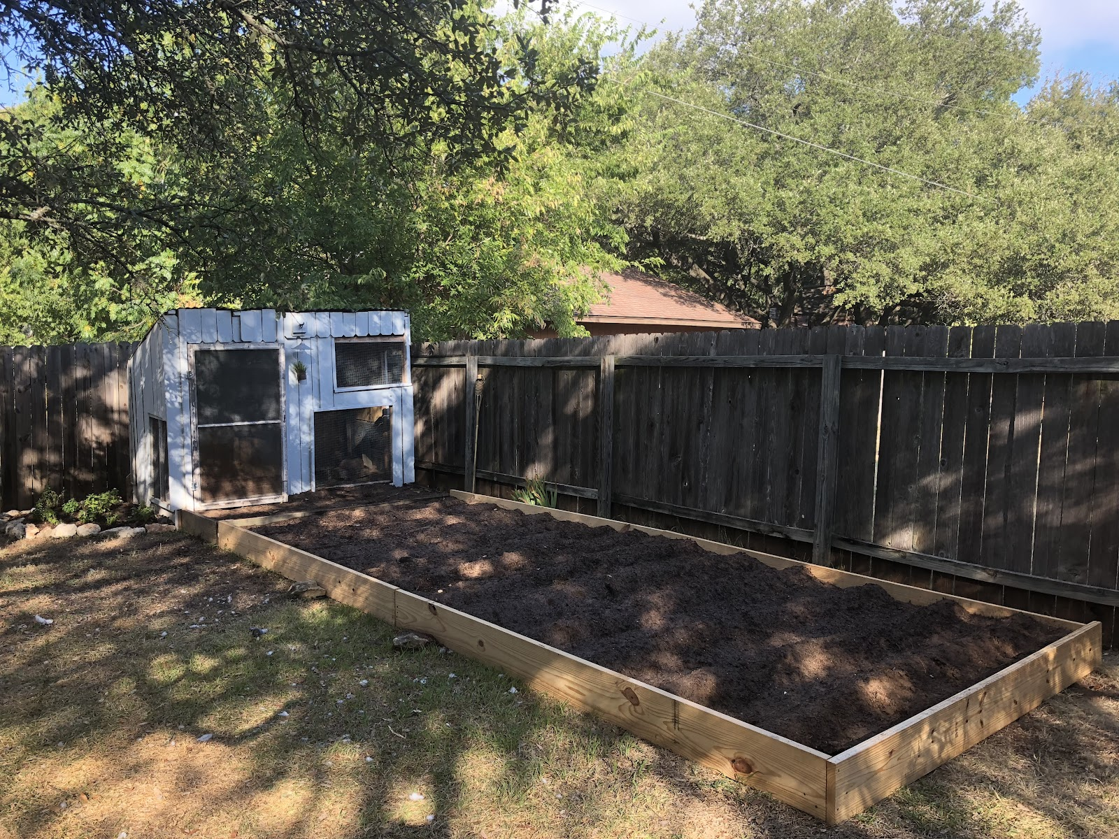 Backyard elevated vegetable garden