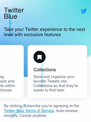 Twitter Albastru