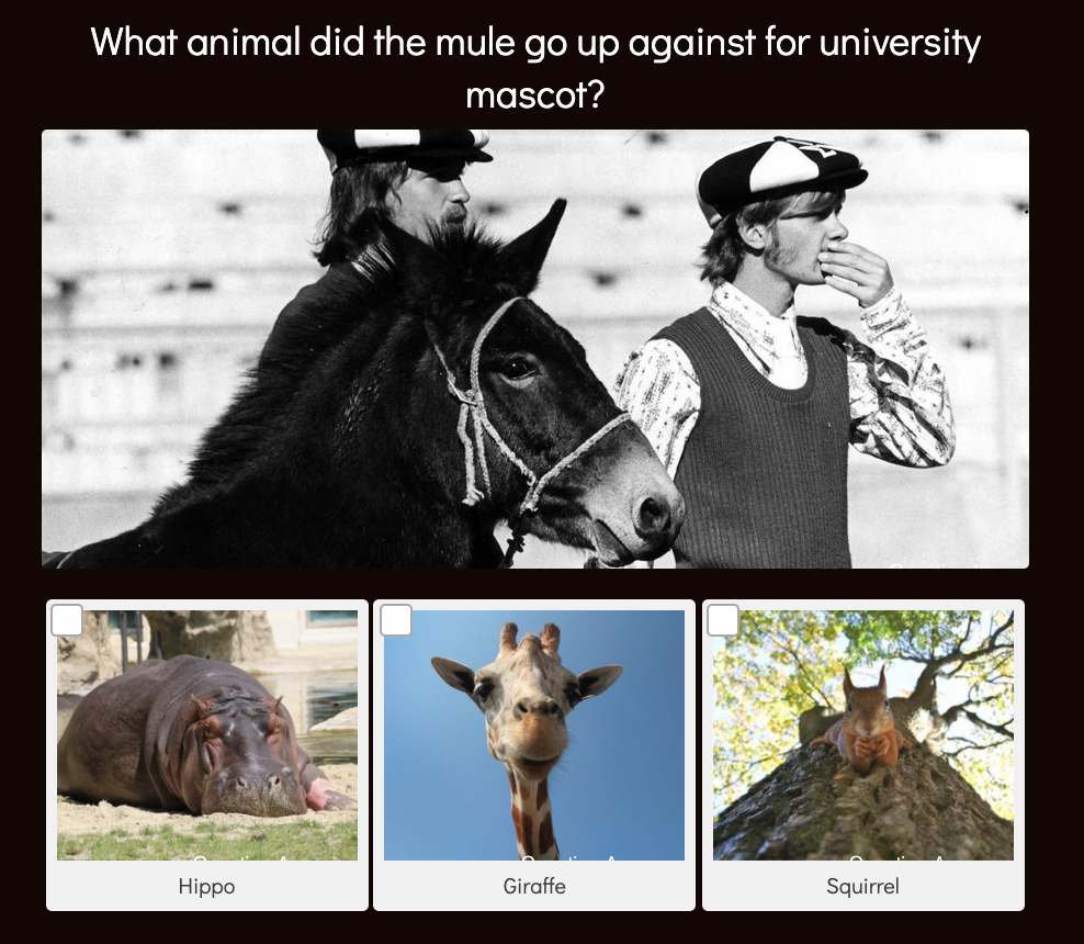 example of college trivia quiz question about mascot