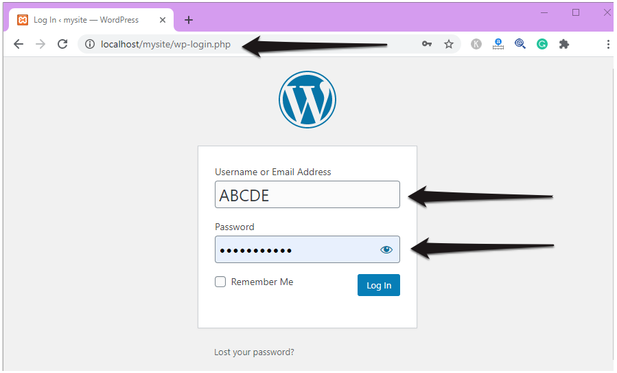 Login to your WordPress Localhost Website.