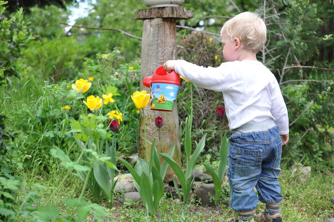 child-559407_1280.jpg