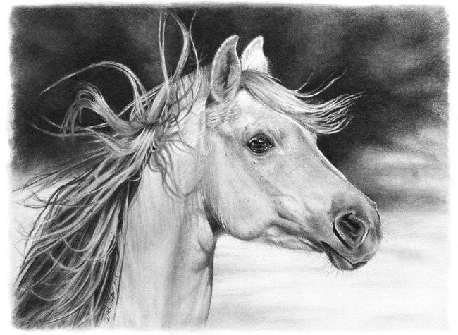 Por Amor al Arte Impresionantes dibujos hechos con lapiz de Linda