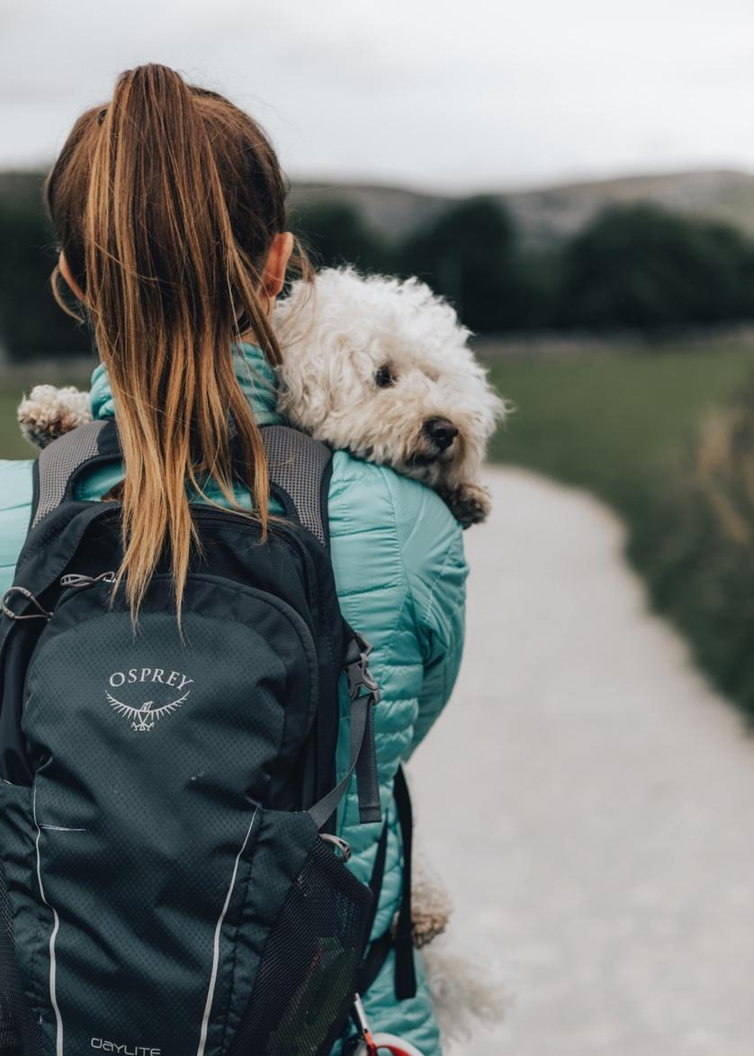 A person with a dog on her back  Description automatically generated with low confidence