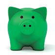 SCU Pocket Banking