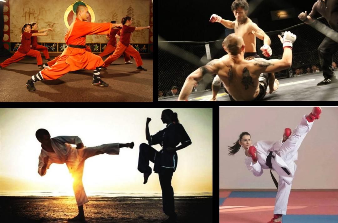 Tipos de artes marciales