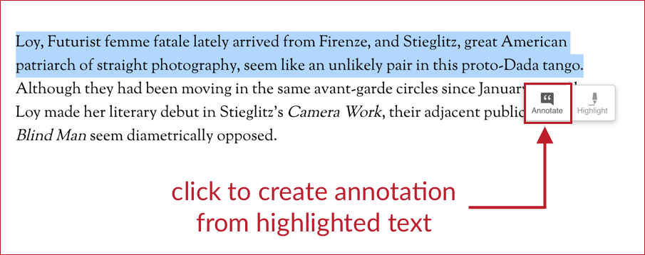 screen shot of selected text with annotation icon highlighted.