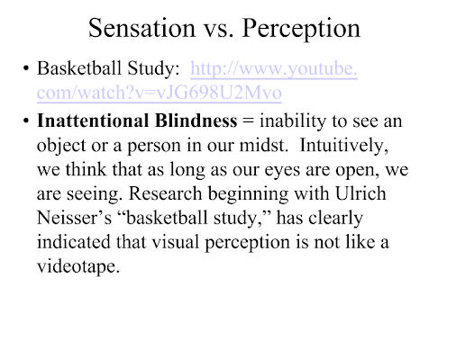 the effect of language on perception essay The effect of language on perception language: language is defined as any body which can be written, spoken, or otherwise communicated between individuals and/or groups.
