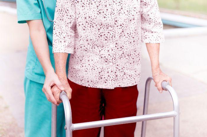 Image result for paraplegia halodoc
