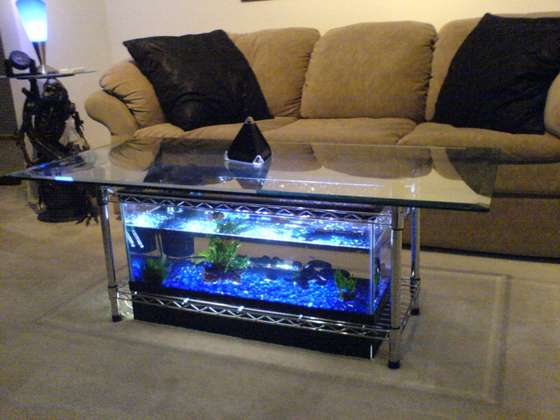 Build an aquarium coffee table for a fraction of the cost of ready ...