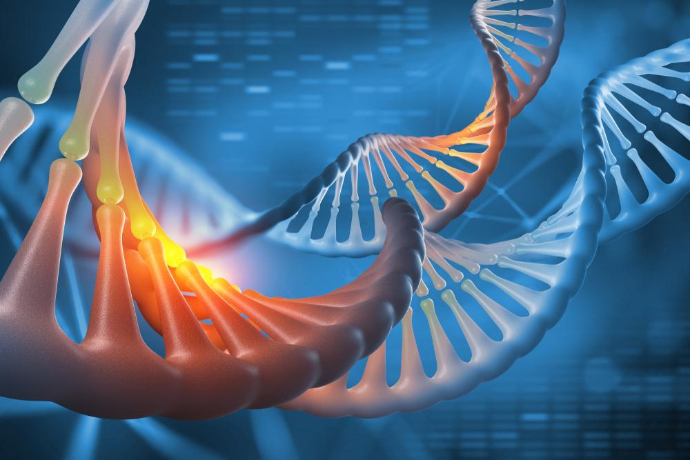 Sequenciamento genômico é utilizado para prever caminhos que uma doença pode rumar. (Fonte: Shutterstock)