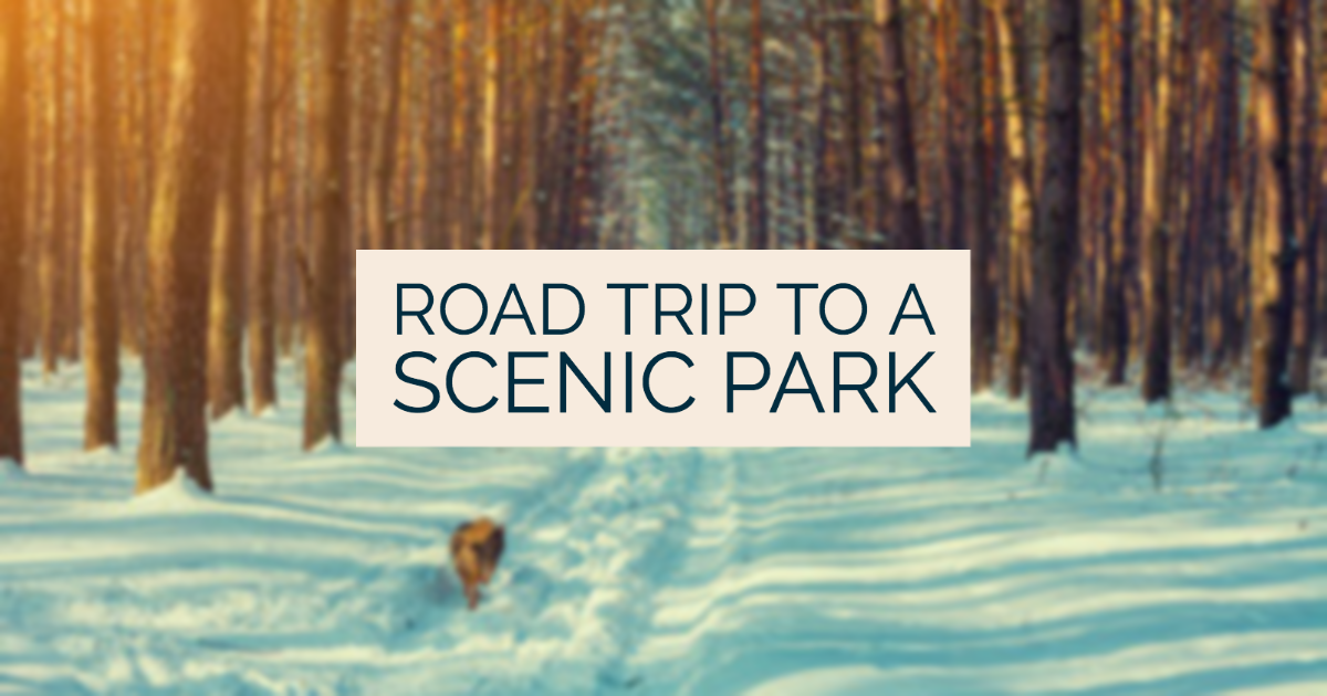Go On a Road Trip to a Scenic Park