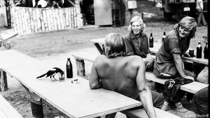 Сорока пьет пиво из стакана, за столами сидят рабочие