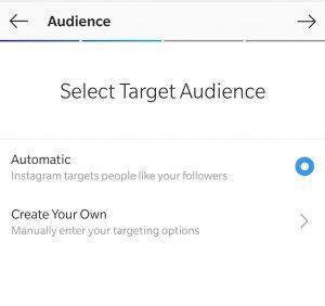 instagram-audience