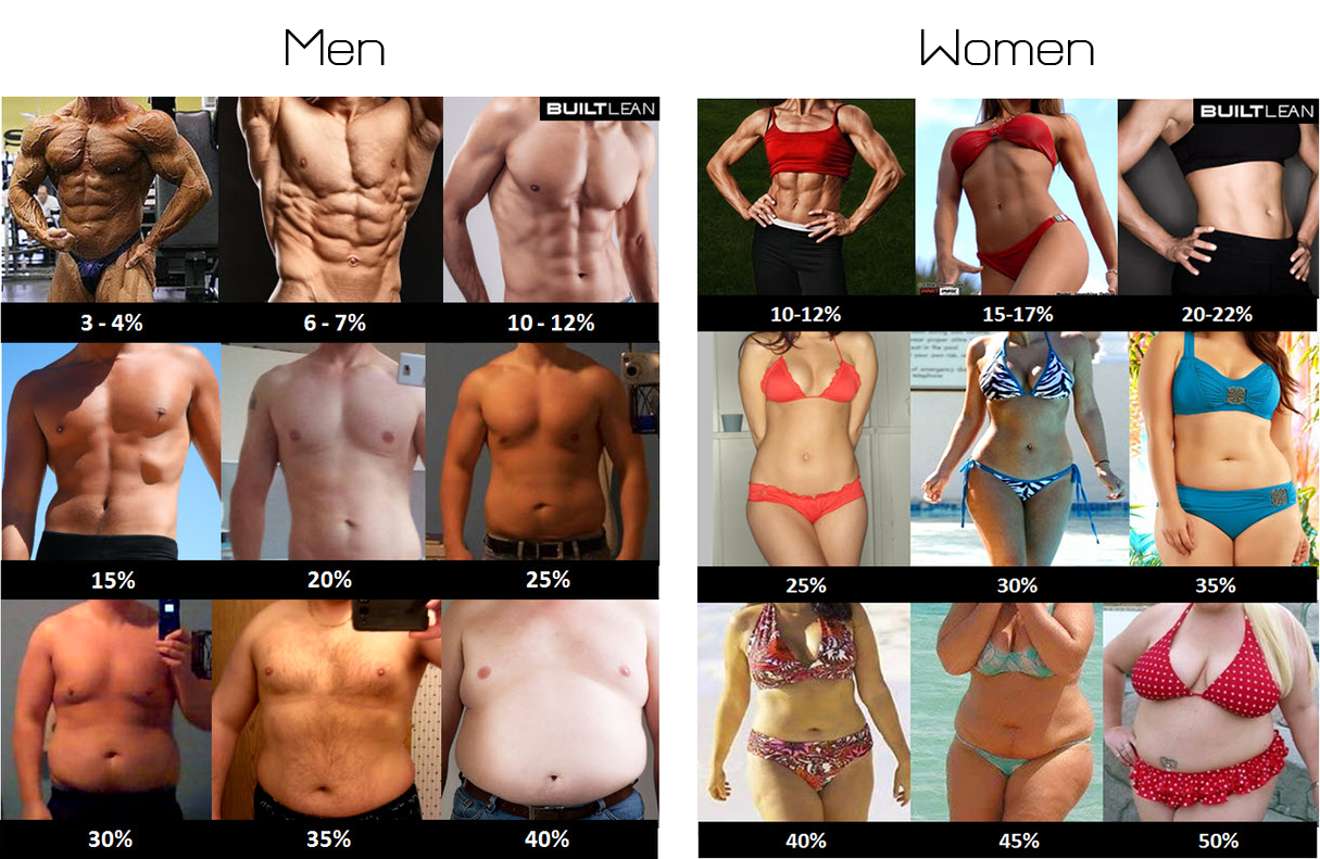 body-fat-percentage-men-women.png