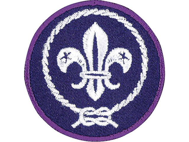 world crest patch.png
