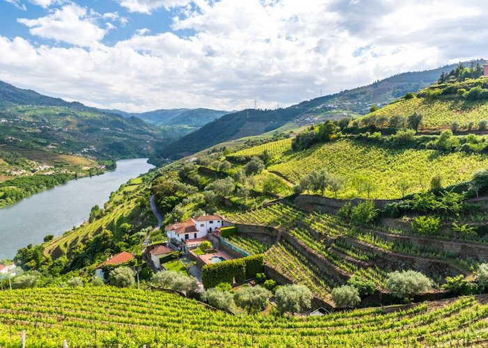 Driving Through Douro Valley Porto