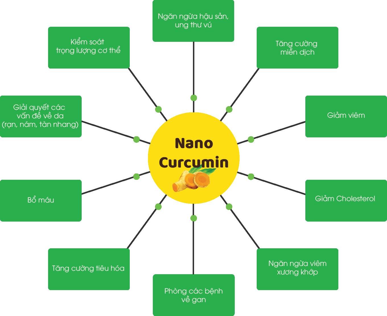 https://scurmafizzy.com/wp-content/uploads/2017/10/Nano-Curcumin_Phunusausinh.png