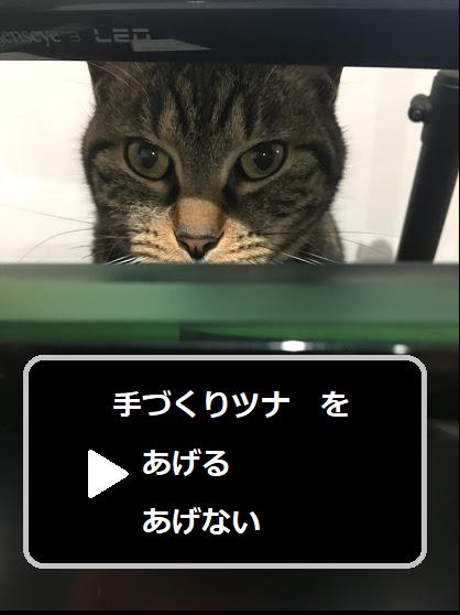 猫のための手作りご飯~前回の続き~