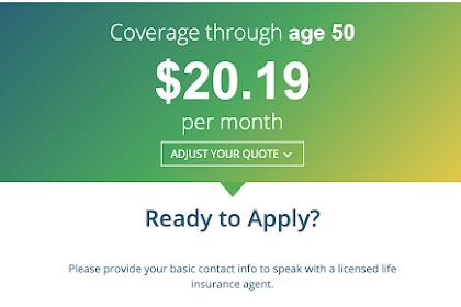 Best Banner Life Insurance Company Review Pics