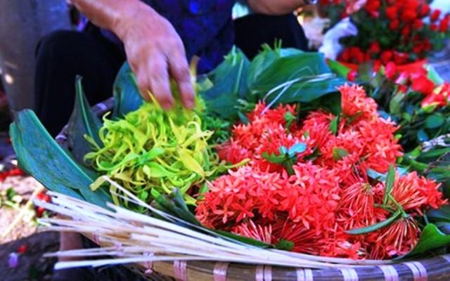Hoa mẫu đơn được dùng để thắp hương Đức Phật
