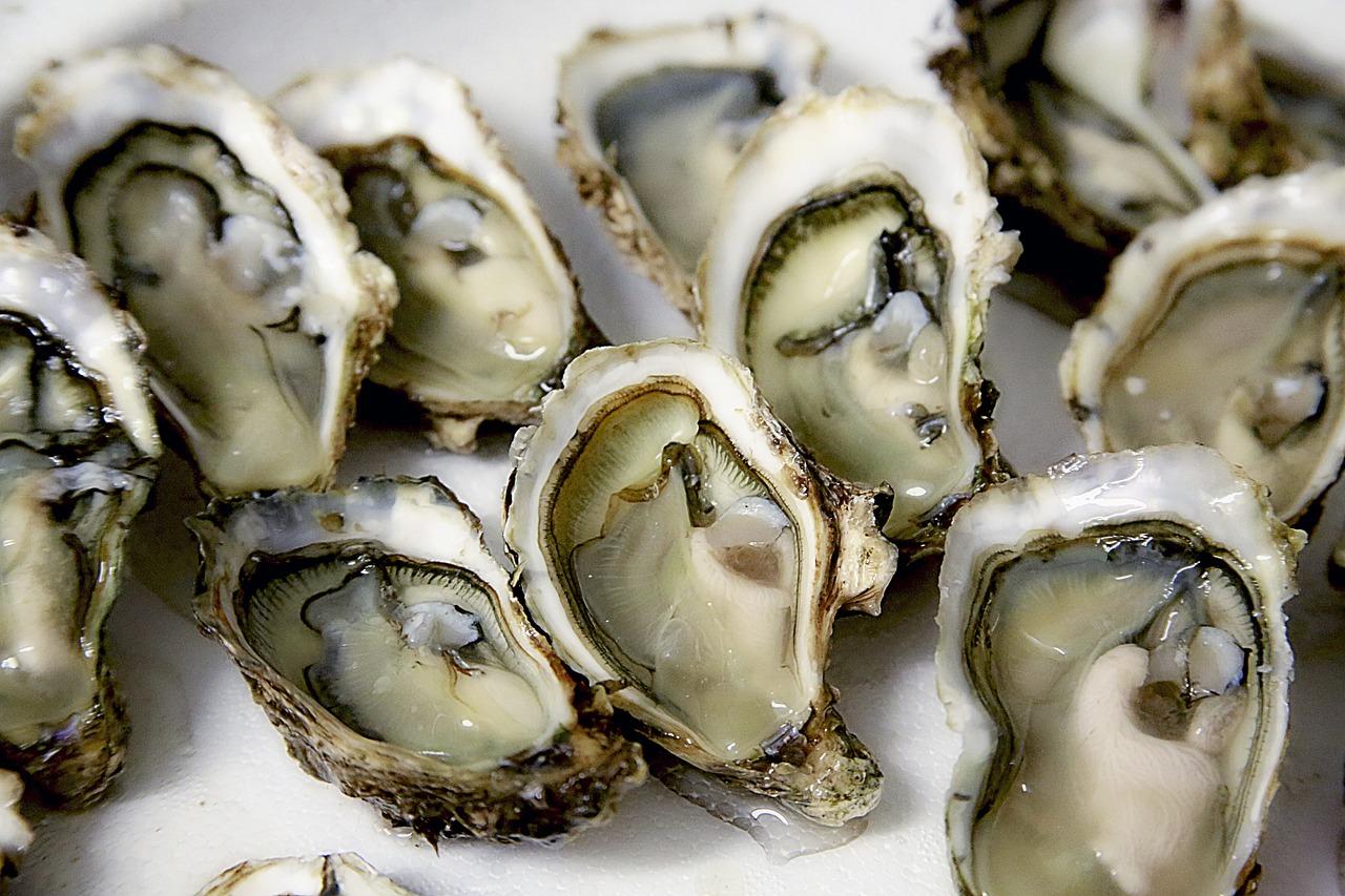 oyster-1522835_1280.jpg