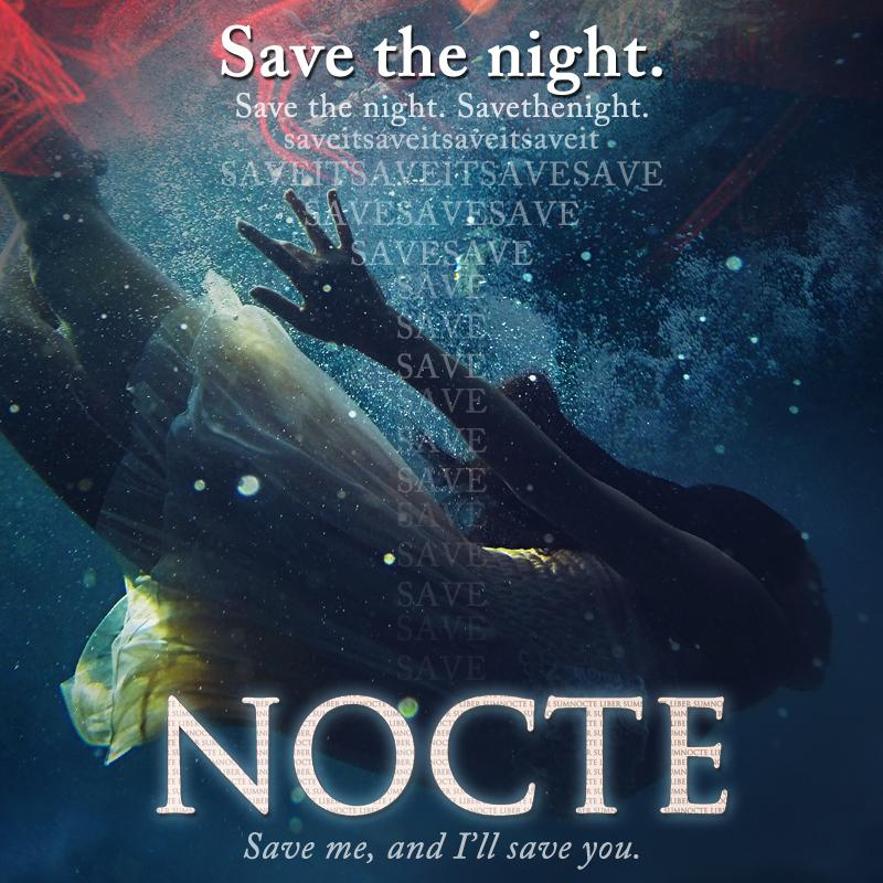 https://lizclong.files.wordpress.com/2014/11/savethenight.jpg