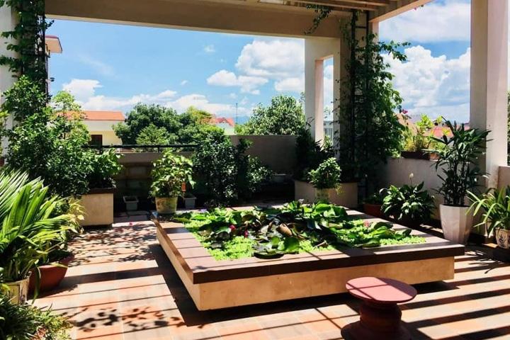 Sân vườn trên sân thượng góp phần lọc không khí cho trong lành