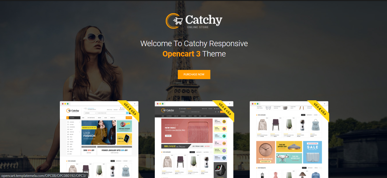 Catchy - Cosmetic opencart theme: