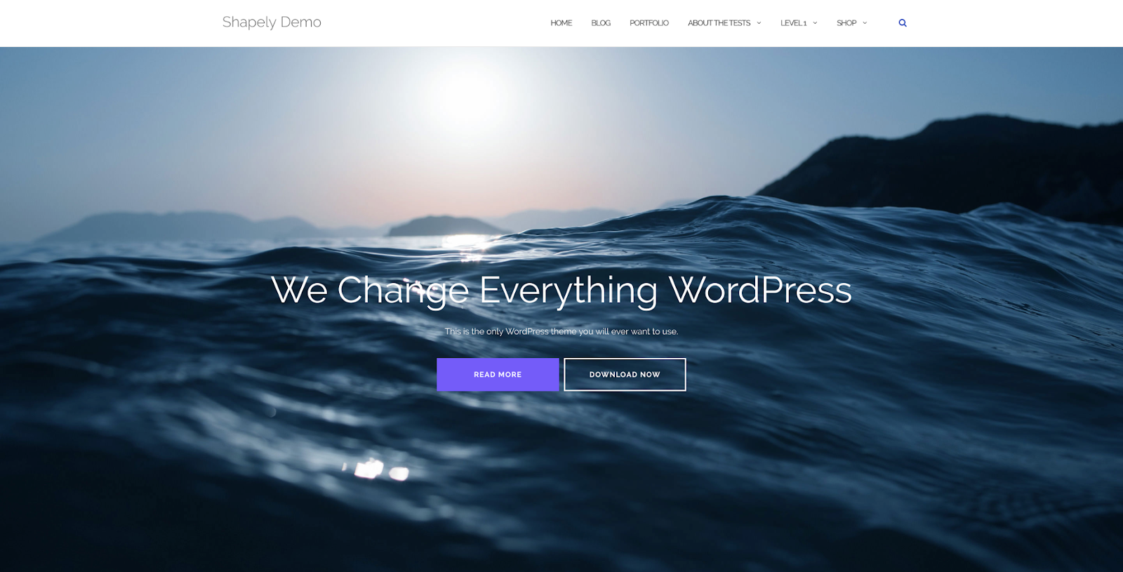 Shapely best free themes in wordpress