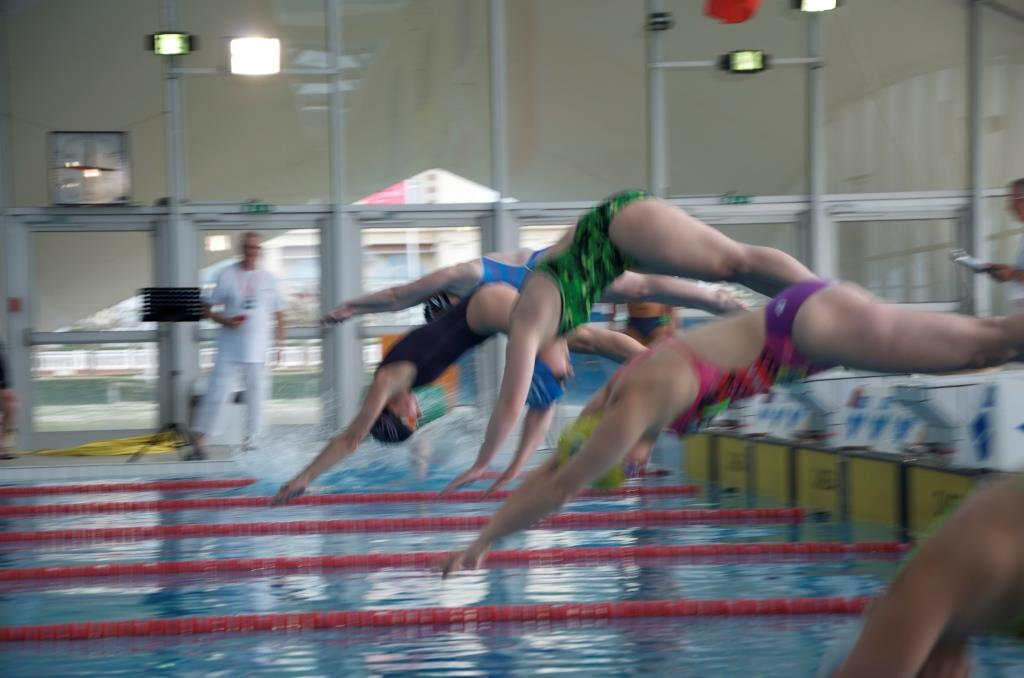Ln - lointain plongeon sent.jpg