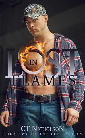 Lost in Flames cover picture.jpg