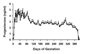Mean (+sem) serum progesterone concentrations in pregnant camels.