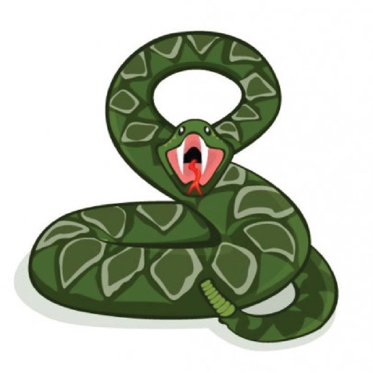 5. งู