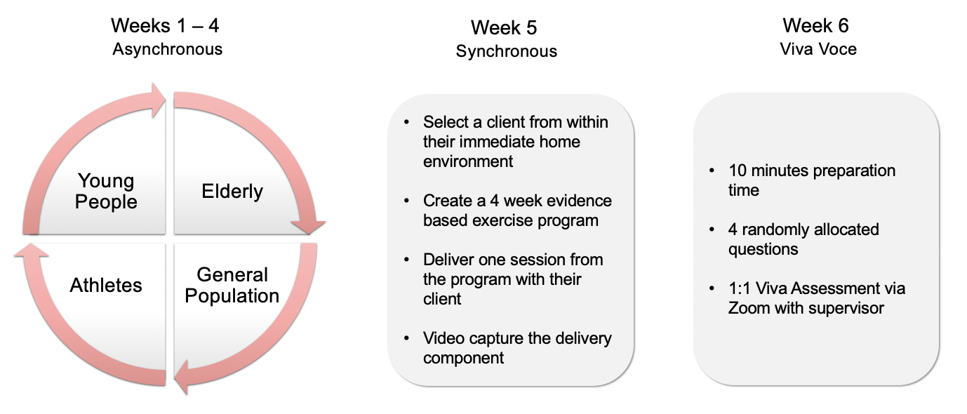 Image showing the 6-week Telepractice in stages