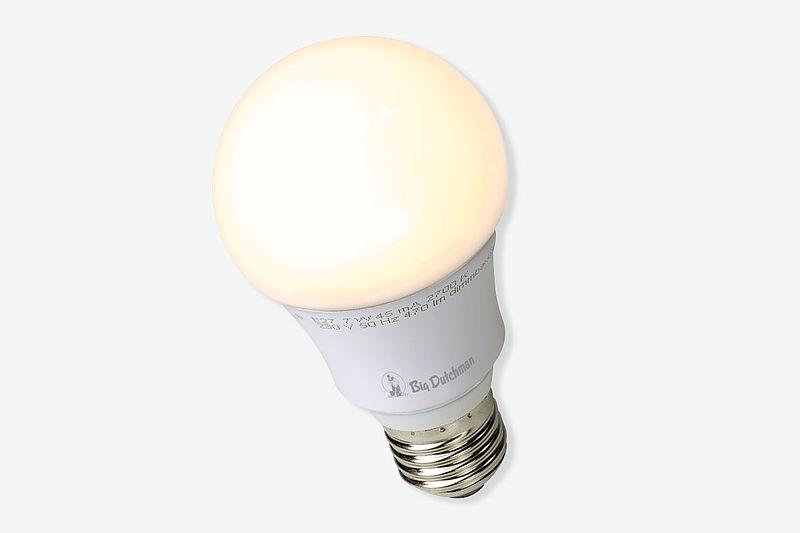 Paukštidės apšvietimas su LED ir ERS reguliatoriais