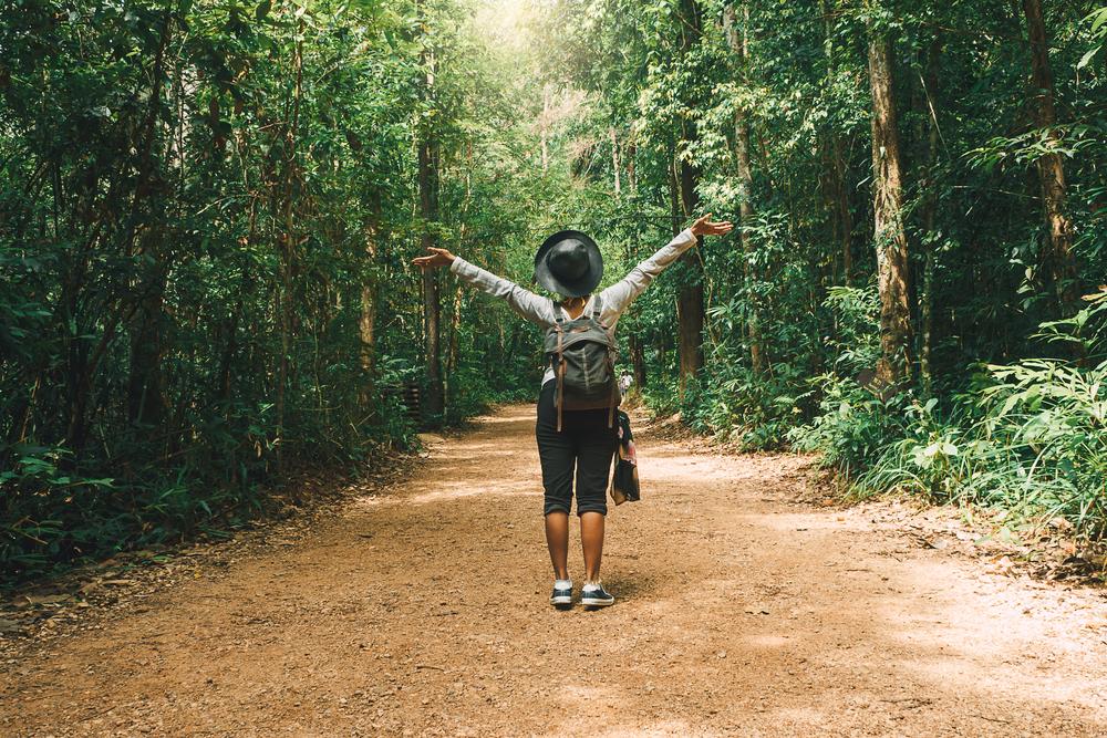 """Conceito japonês de """"banho na floresta"""" inspirou autora da pesquisa. (Fonte: Shutterstock)"""