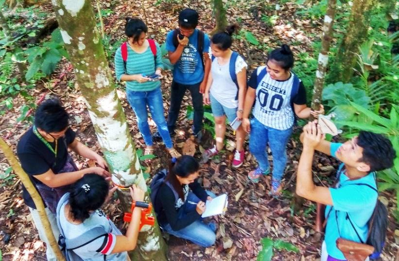 Forestry Students gathering data on trees during their forest inventory class