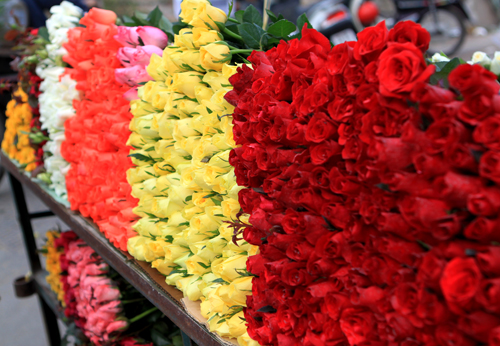 Thanh lọc luân xa với hoa tươi ngày đầu tháng