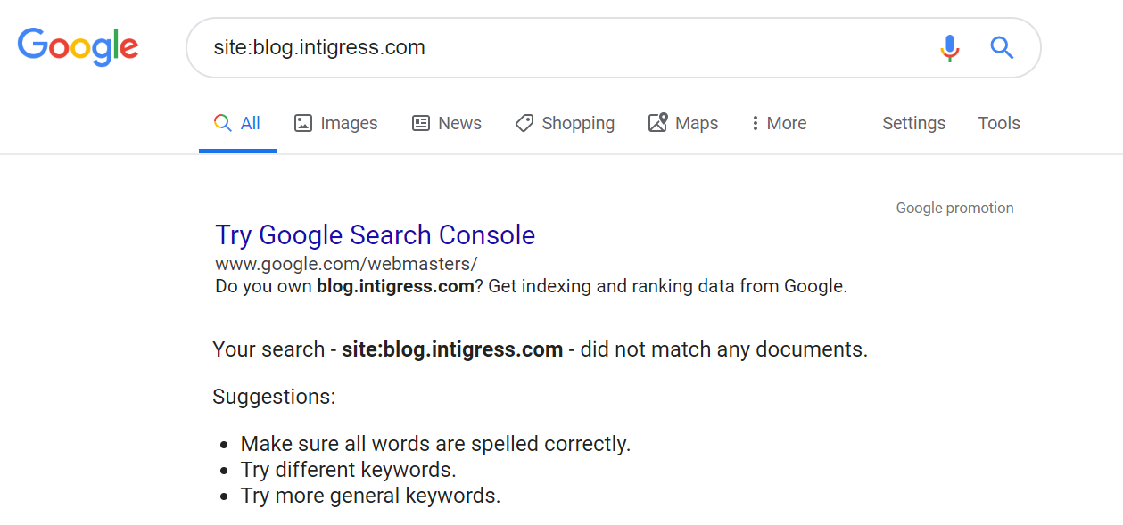 Screenshot of the results after performing a site: search for a website not yet indexed on Google