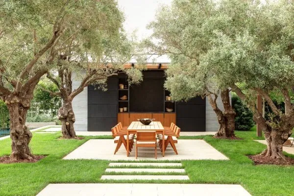 Doing Your Own Landscape at Home