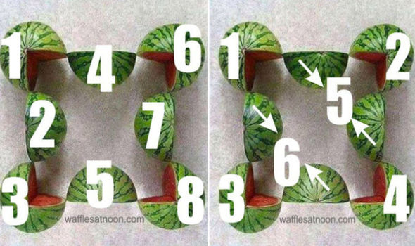 Answer to watermelons riddle