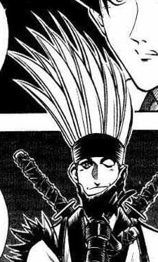 Hair of insane broom