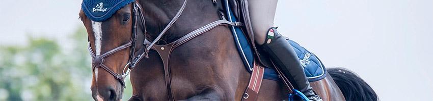 Jeździec w siodle skokowym
